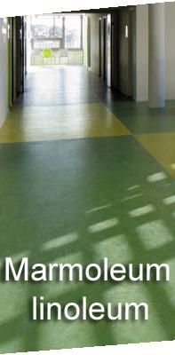 marmoleum linoleum